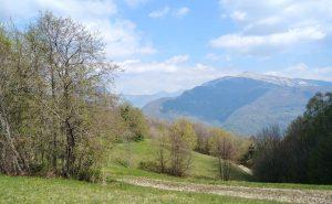 prati fioriti delle valli del natisone
